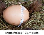 Nest with unborn chick trying to get out of his egg - stock photo