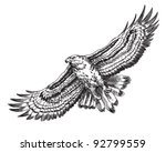 hand drawn hawk illustration | Shutterstock .eps vector #92799559