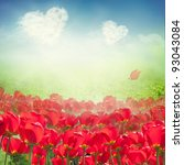 Valentines card. Tulip field with grass meadow and  heart clouds on blue sky - stock photo