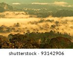 Danum Valley National Park, Malaysian Borneo - stock photo
