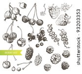 berry set  highly detailed hand ... | Shutterstock .eps vector #93203353