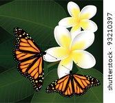 vector frangipani and... | Shutterstock .eps vector #93210397