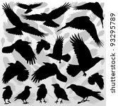 Crow And Feathers Silhouettes...