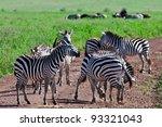 zebras in the ngorongoro crater ... | Shutterstock . vector #93321043