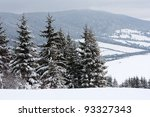 winter scene in mountains - stock photo