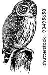 bird eurasian pygmy owl | Shutterstock .eps vector #93495658