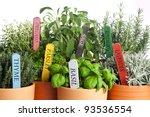 seven kinds of potted garden... | Shutterstock . vector #93536554