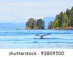 Humpback whale near Vancouver Island, Canada - stock photo