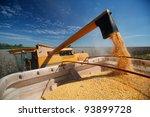 Corn Harvest On Farmland In...