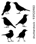 birds silhouette   6 different... | Shutterstock .eps vector #93920983