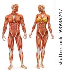 male and female muscular... | Shutterstock . vector #93936247