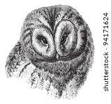 Stock vector brown owl strix ulula vintage illustration from meyers konversations lexikon 94171624