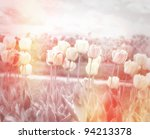 Beautiful Pastel Floral Background With Tulips Field - stock photo