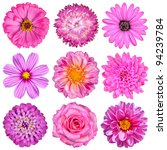 selection of pink white flowers ... | Shutterstock . vector #94239784
