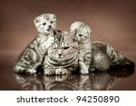 family group of three fluffy ...   Shutterstock . vector #94250890