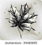 Maple Leaf  Hand Drawing....