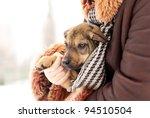 Stock photo lovely puppy 94510504