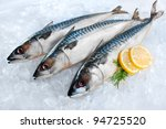 Fresh Mackerel Fish  Scomber...