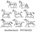 Stock vector horses collection vintage illustration from meyers konversations lexikon 94736410
