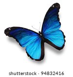 Blue Butterfly  Isolated On...