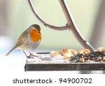 The European Robin  Erithacus...