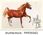Ussr   Circa 1988  Postcard...