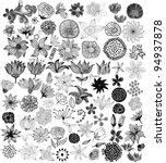 set of black flowers   Shutterstock .eps vector #94937878