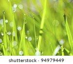 an abstract green grass... | Shutterstock . vector #94979449
