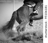 Running Horse During A Pole...