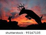White Tail Buck Jumping Ravine...