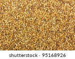Malt background. Ingredient for beer. - stock photo