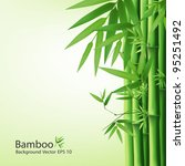 Bamboo Green Leaf  Vector...