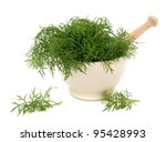 Fennel Herb Leaf Sprigs In A...