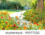Track Among The Flowers In The...