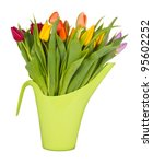 bouquet of tulips  isolated on... | Shutterstock . vector #95602252