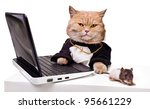 Stock photo intelligent cat with a mouse for the laptop animal in the academic robes on a white background 95661229