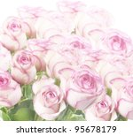 Abstract Background Of Pink  Roses - stock photo