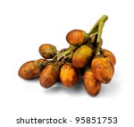 Betel Nut or Areca Nut isolated on white background. - stock photo