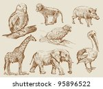 wild animals | Shutterstock .eps vector #95896522