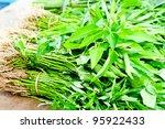 Close up Thai Vegetable - stock photo