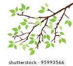 vector tree branch with green...   Shutterstock .eps vector #95993566