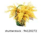 a beautiful bouquet of mimosa... | Shutterstock . vector #96120272