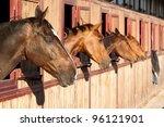 horses in their stable | Shutterstock . vector #96121901