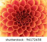 flower and beautiful petals | Shutterstock . vector #96172658