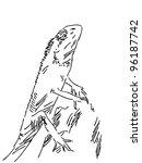 hand drawn lizard | Shutterstock .eps vector #96187742