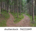 A Single Alpine Path Splits In...