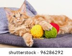 Stock photo main coon cat lying with balls of wool 96286292