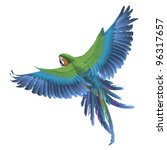 parrot | Shutterstock .eps vector #96317657