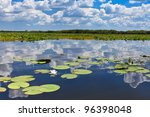 a beautiful lake in danube... | Shutterstock . vector #96398048