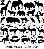many silhouettes of zoo animals; vector illustration;